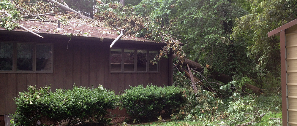 Emergency tree service richmond va