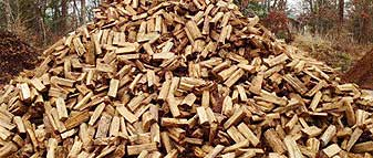Firewood Delivery in Richmond Va & Surrounding Areas