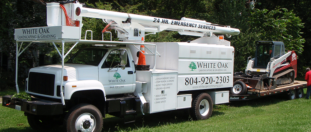 White Oak Tree Services Richmond VA